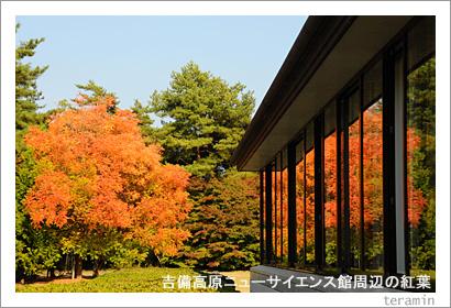 吉備高原ニューサイエンス館周辺の紅葉1