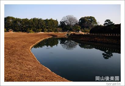 岡山後楽園 芝焼き写真3
