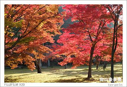 kourakuen_141122_1