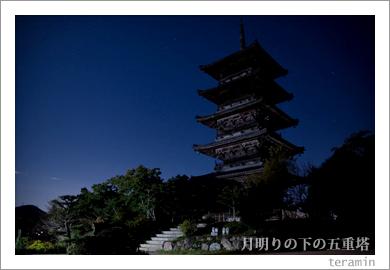 月明りの下の国分寺五重塔