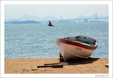 渋川海岸2
