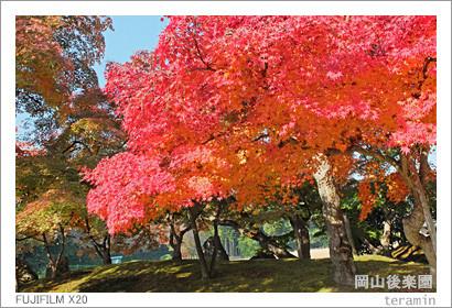 kourakuen_141122_2