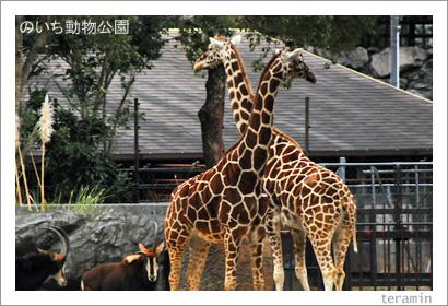 のいち動物公園 写真2