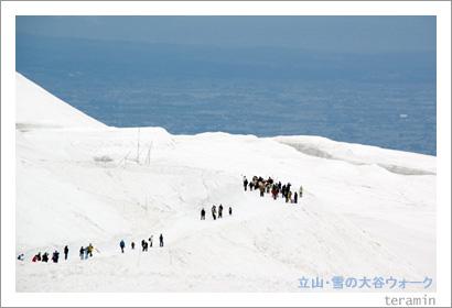 立山・雪の大谷4