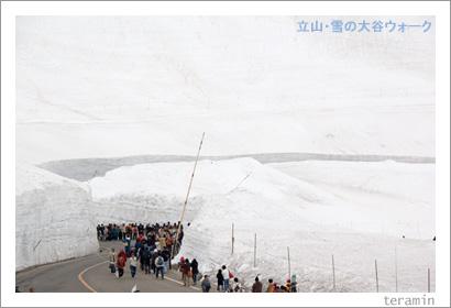 立山・雪の大谷1