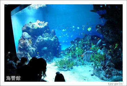 海響館 写真2