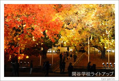 閑谷学校ライトアップ 写真2