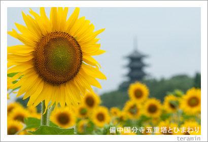 kokubunji120714_3