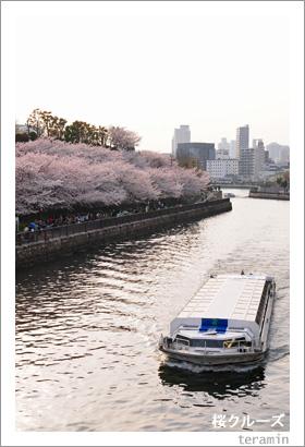 桜クルーズ4