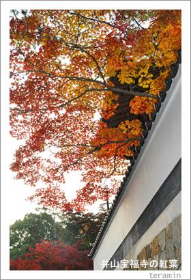 井山宝福寺の紅葉3