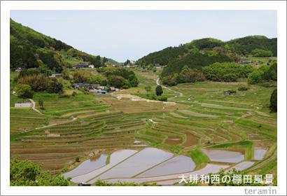 美咲町 棚田写真3
