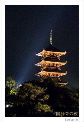 備中国分寺の夜1