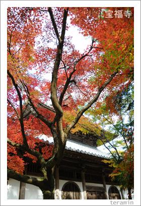 宝福寺の紅葉 写真1
