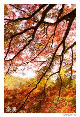 豪渓の紅葉 写真1
