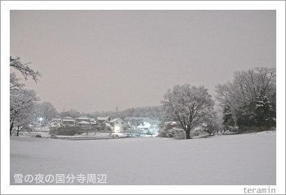 kokubunji110314_4