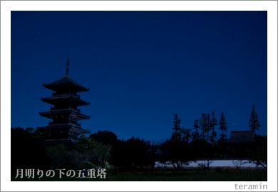 月明りの下の国分寺五重塔2