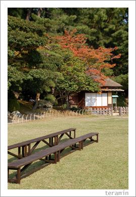 後楽園・秋3