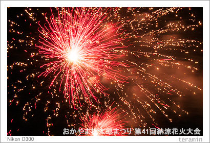 fireworks2014_3