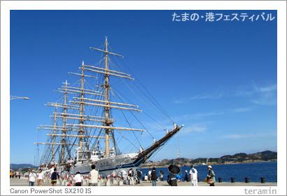 たまの・港フェスティバル 写真2