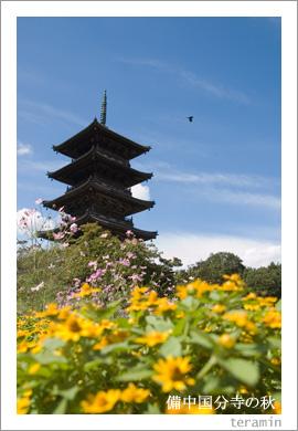 備中国分寺の秋3
