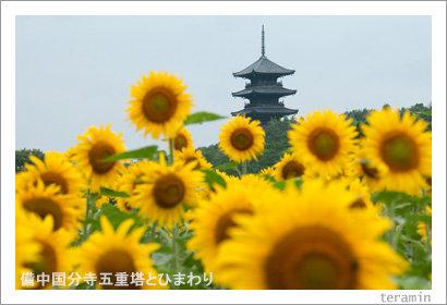 kokubunji120714_2
