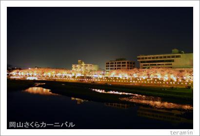 岡山さくらカーニバル 夜桜 写真1