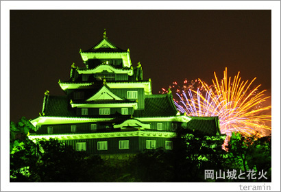 岡山城と花火 写真1