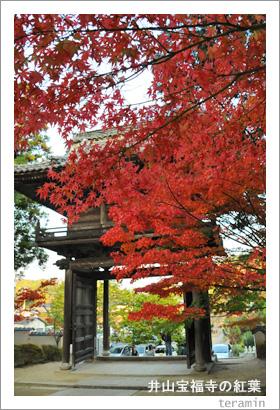 井山宝福寺の紅葉1