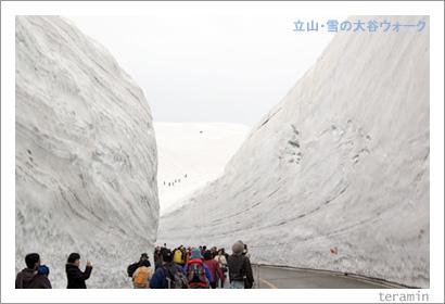 立山・雪の大谷2