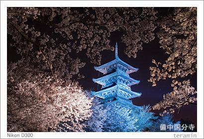 kokubunji140404
