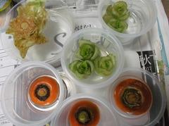 テーブルの野菜1