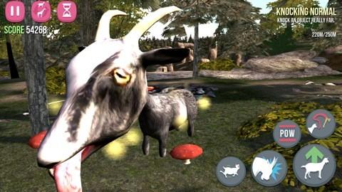 goat03