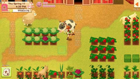 harvest-moon-light-of-hope-ios-cows-cauliflower-strawberries