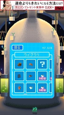 star_r2
