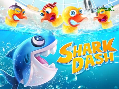 shark01