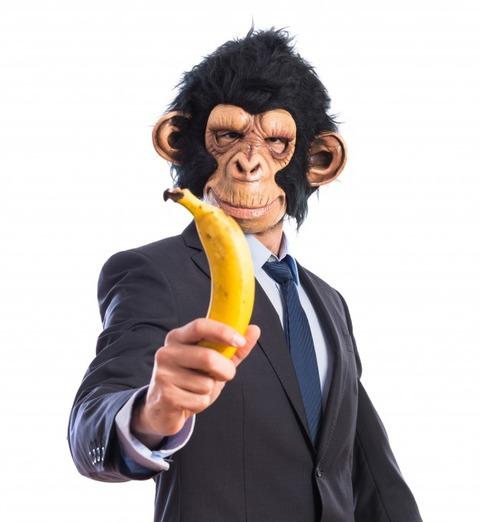 バナナ持つサル着ぐるみ