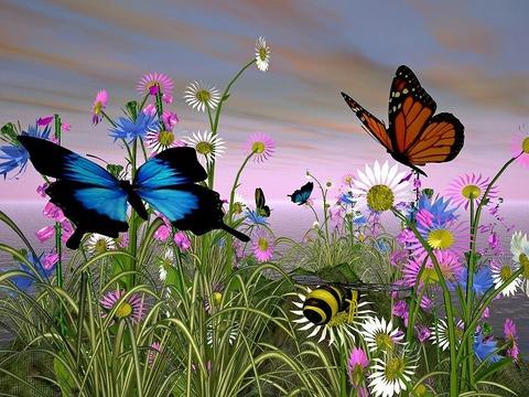 蝶花蜂カラフル650