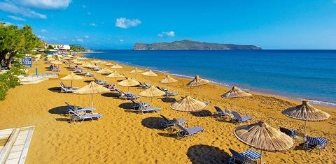 朝のビーチクバ傘パラソル800