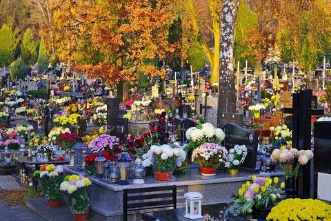 autumn-3853469_960_720