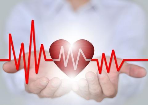心臓&心臓波形&医師の両手