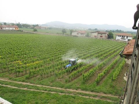 ブドウ園農薬撒き600