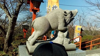 a-IMG_20170103_112131