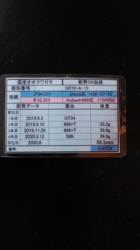 DSC_0928