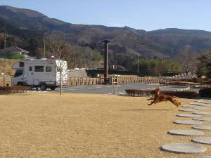 20060109hoshino1
