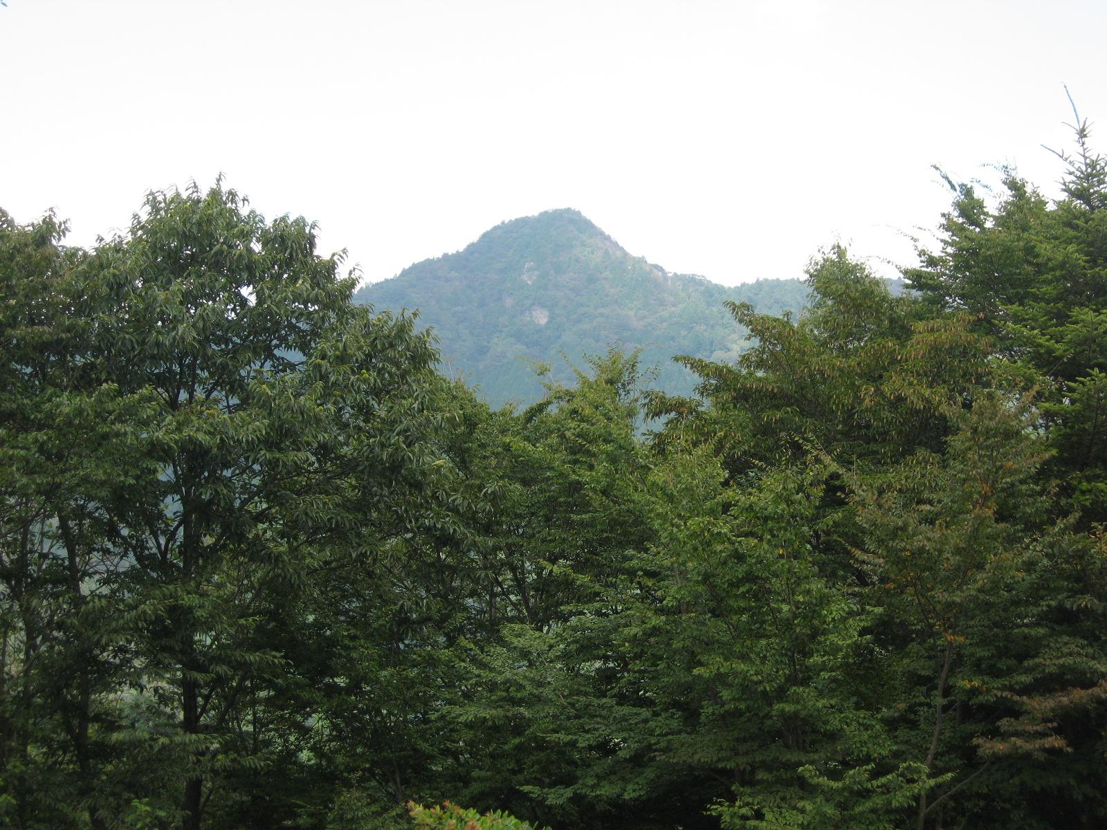 途中から大岳山が姿をみせて ...