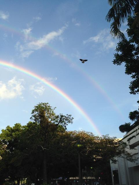 ケアンズの虹