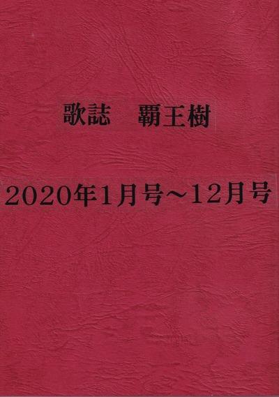 IMG_20210221_0001