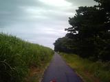 酒匂川道中1