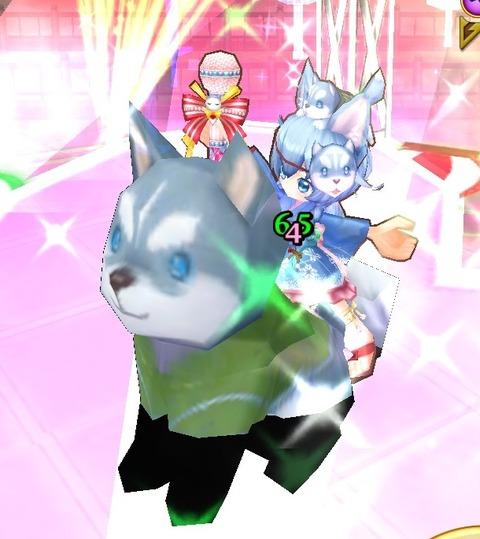 白猫2271