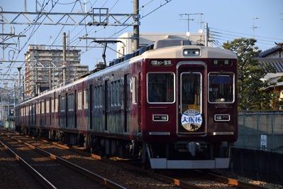 DSC_3681-2